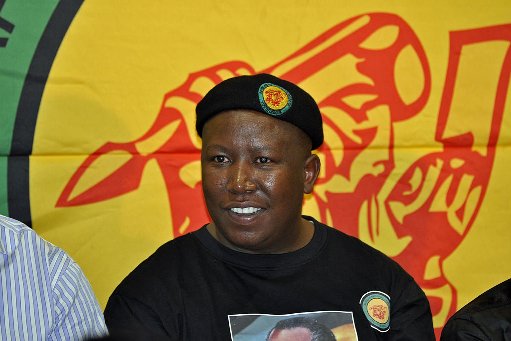 Julius Malema Farmland Prices