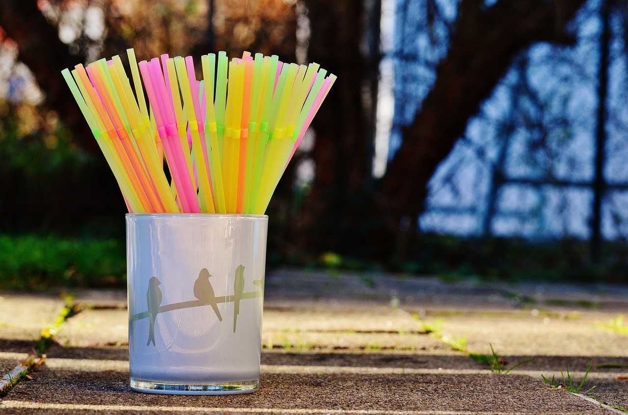 Plastic Straw Man